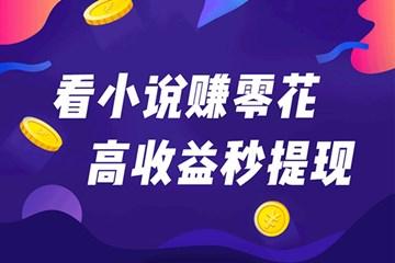 淘小说赚钱是真的吗?提现30元秒到账